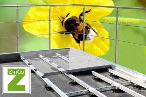 Teaserbild mit Biene